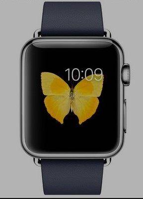Apple Watch App on iPhone