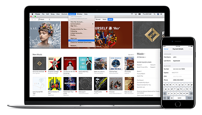 How to Troubleshooting iTunes on Your Mac | iGotOffer