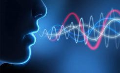 Voice Technology: What the Favorites Do